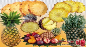 Pineapple Properties- خواص آناناس