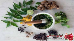 Digestive Diseases and herbal medicine